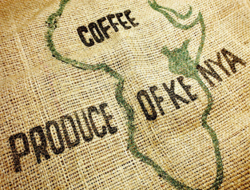 قهوه کنیا اسپیشیالیتی